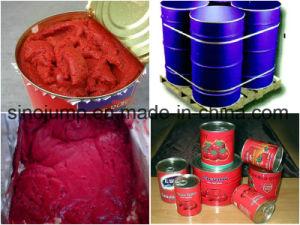 Brix 28-30% Cold Break Tomato Paste in Drum pictures & photos