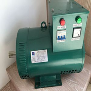 OEM Manufacture Electric Brush Single Phase or Three Phase Alternator