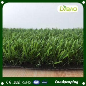 Artificial Grass / Moss for Kindergarten, Backyard, Park, Public Area Landscaping pictures & photos