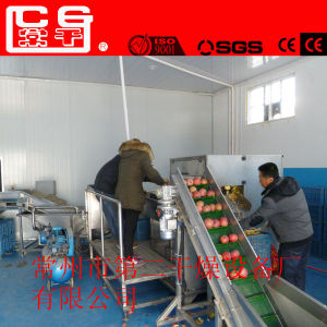 Apple Chips Mesh-Belt Dryer for Foodstuff Industry pictures & photos