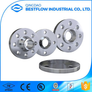 ANSI/DIN/AISI 316L/304L Stainless Steel Forged Flange pictures & photos