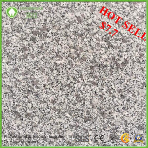 Our Own Quarry Light Grey Competitive Price Polished G603 Granite Tile pictures & photos