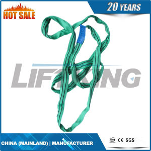 100% Polyester Round Sling (lifting round sing) Textile Round Sling pictures & photos