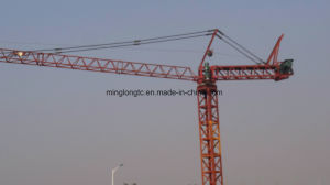 Qnp10 Inner Climbing Tower Crane-1t pictures & photos