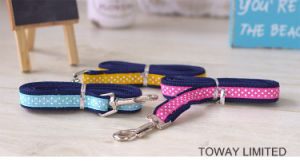 Printing Cute Dog Lead Cartoon Mesh Pet Harness with Leash pictures & photos