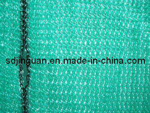 Green Scaffold Safety Net