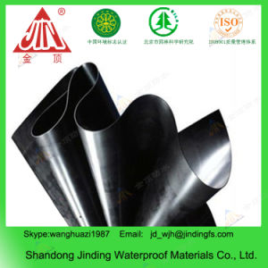 HDPE Geomembranes Used in Dam Liner pictures & photos