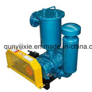 China Made Roots Vacuum Pump for Vacuum Packing