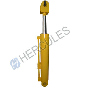 Chinese Hydraulic Cylinder for Engineering pictures & photos