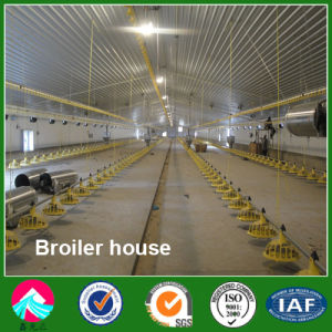 Fast Erection Steel Structure Broiler House with Automatic Equipment pictures & photos