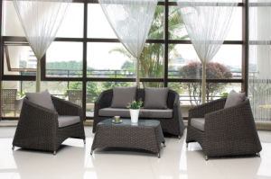 Outdoor Garden Rattan Sofa (BZ-R002)