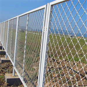 Hot-Dipped Galvanized Beautiful Grid Wire Fence pictures & photos