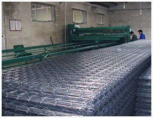 Welded Wire Mesh Panel pictures & photos