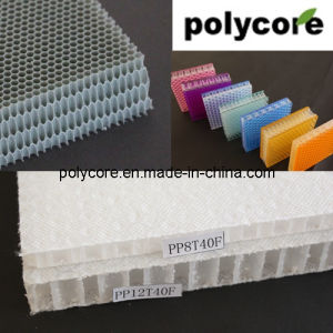 FRP Panel PP Honeycomb PC Honeycomb Panel pictures & photos