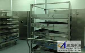 CTDE-CF Series Split Type Convection Clean Drying Oven pictures & photos