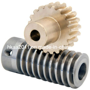 Stainless Steel Worm Drive Gear and Brass Transmission Spur Gear pictures & photos