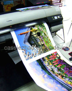 Inkjet Canvas Cotton Matt pictures & photos