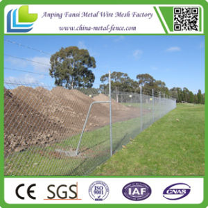 China Factory Galvanized Chain Wire Netting pictures & photos
