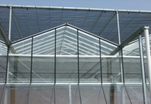 Modern Design Glass Greenhouse for Picking Garden with Adjustment System