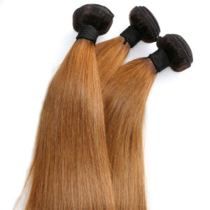 Silky Straight Burmese Remy Hair Weave Ombre Human Hair pictures & photos