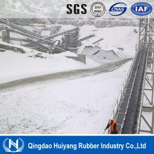 Cold Area Material Handling System Cold Resistant Conveyor Belt pictures & photos