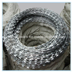 Hot Dipped Galvanized Military Concertina Razor Wire pictures & photos
