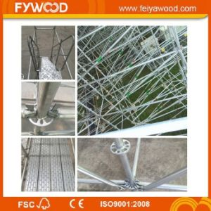 Hot DIP Galvanized Ringlock Scaffolding for Construction Project