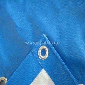 Eyelet Polyethylene Tarp for Tent pictures & photos
