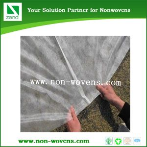 Polypropylene Spunbond Non Woven Crop Cover pictures & photos