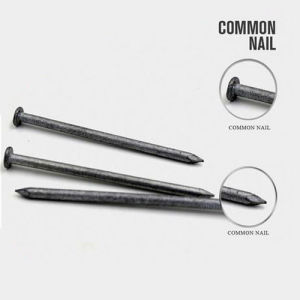 Factory Supply 6D Common Wire Nails with Good Quality pictures & photos