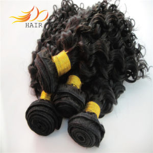 Indian Virgin Hair Weave 6A Jerry Curl Human Hair Weaving pictures & photos