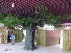 Indoor Decoration Fiberglass Artificial Ficus Tree pictures & photos