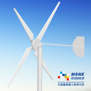 5kw Windmills Generator Without Iron Core, No Cogging Effect