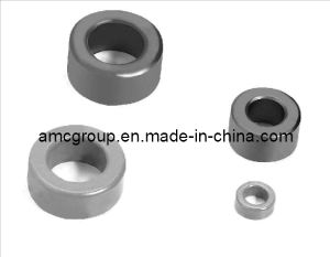 FM-29 Ring Strontium Ferrite Magnet From China Amc pictures & photos
