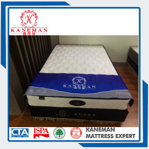 Cheap Compress Spring Mattress Wholesale pictures & photos