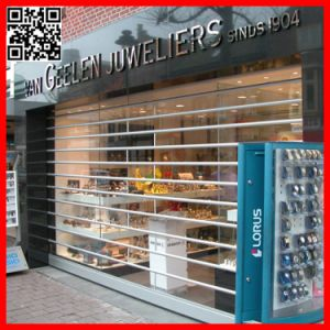 Clear View Transparent Polycarbonate Roll up Door (ST-004) pictures & photos