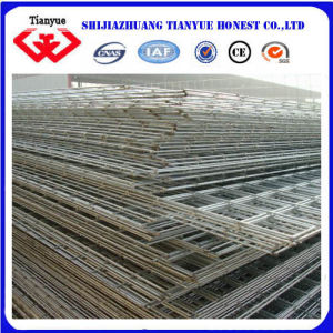 2 Inches X2incheswelded Wire Mesh (TYB-0037) pictures & photos