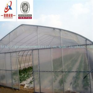 Free-Standing Greenhouse, Farmers′ Best Choice pictures & photos