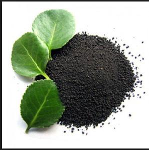 Potassium Humate High Quality Organic Fertilizer pictures & photos
