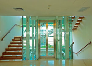 Glass Home Elevator pictures & photos