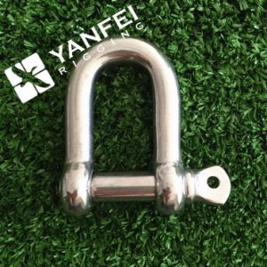 Stainless Steel European Type D Shackle pictures & photos