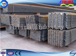 Carbon JIS Standard Steel Angle Bar (FLM-AN-007) pictures & photos