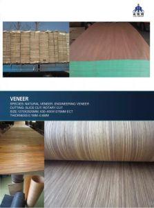 Core Veneer pictures & photos