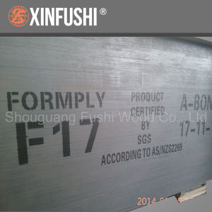 F17 Formwork Plywood for New Zealand Hot Sale pictures & photos