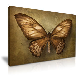 Best Selling Butterfly Still Life Canvas Printed Painting