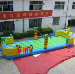 Giant Inflatable Jungle Volleyball Court in China 12X4m pictures & photos