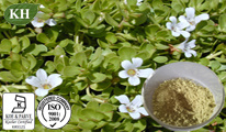 Bacopa Monniera Extract: 20%, 50% Bacopasides by HPLC; 10: 1 pictures & photos