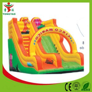 Commercial Inflatable Bouncers for Kids Park pictures & photos