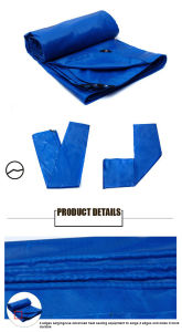 PVC Waterproof Coated Tarpaulin/Tarp for Truck/Ship Cover pictures & photos