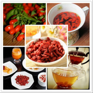 Super Grade Organic Goji Berries, Ningxia Goji Berries pictures & photos